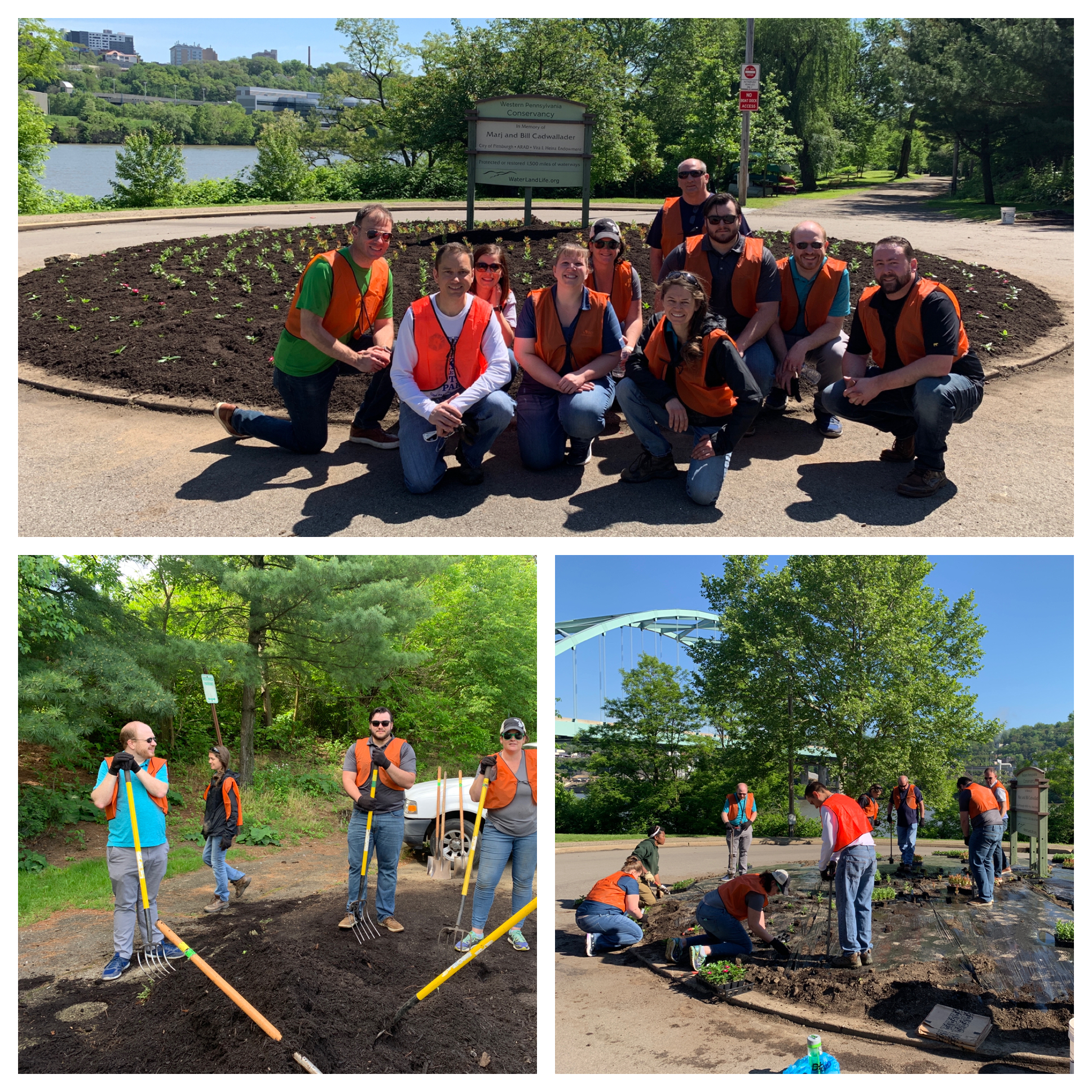 DQE Employees Volunteer at Local Community Garden